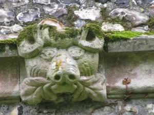 A foliate head or a 'green pig' from Wye parish church Photo: Imogen Corrigan