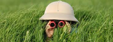 Person with binoculars exploring what is around them