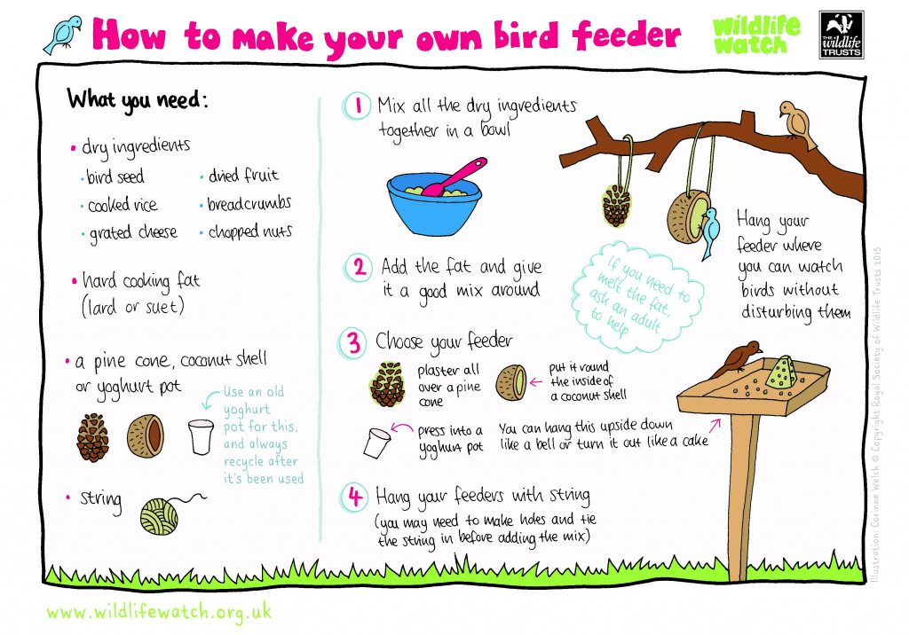 poster from the wild life trust detailing how to make a bird feeder