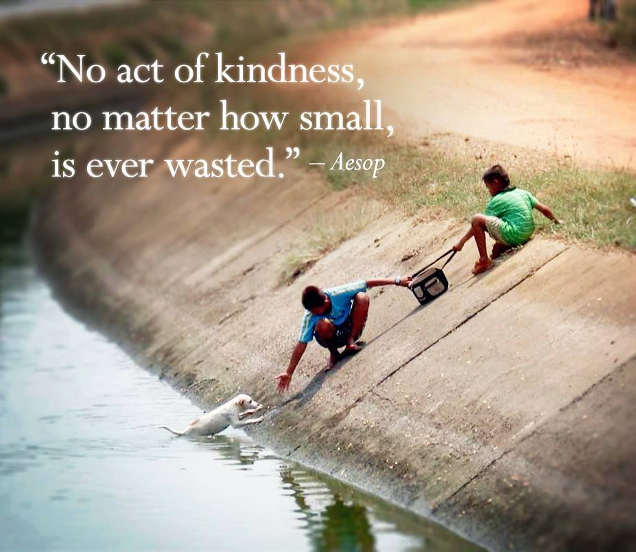 text - 'no act of kindness, no matter how small, is ever wasted' Aesop