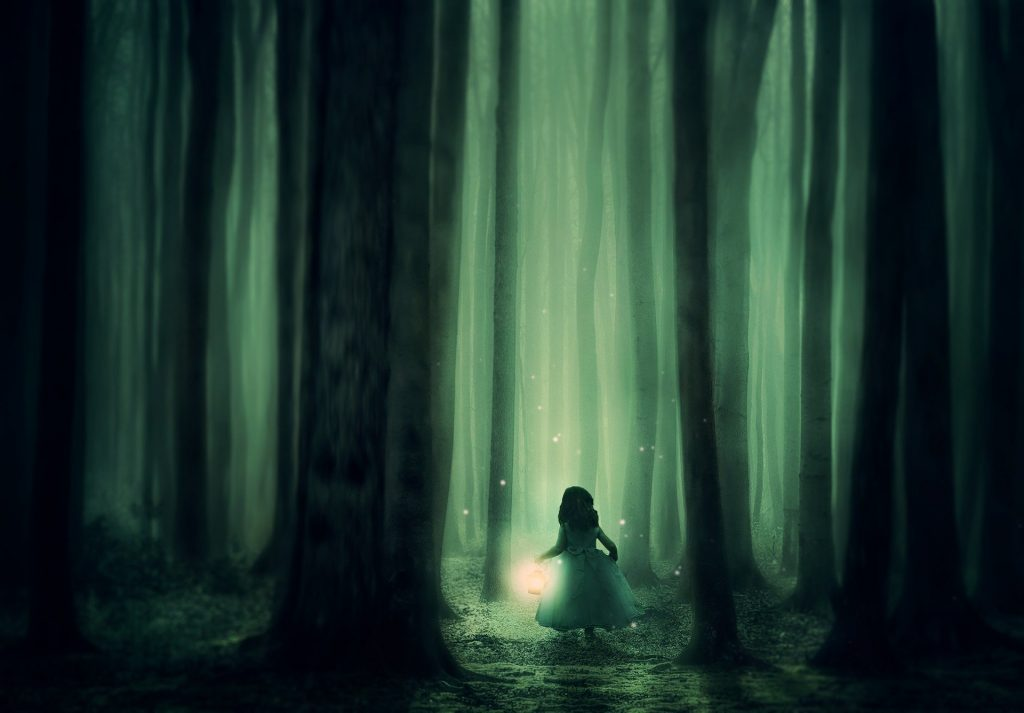 a dark forest with a young princess following the fireflies