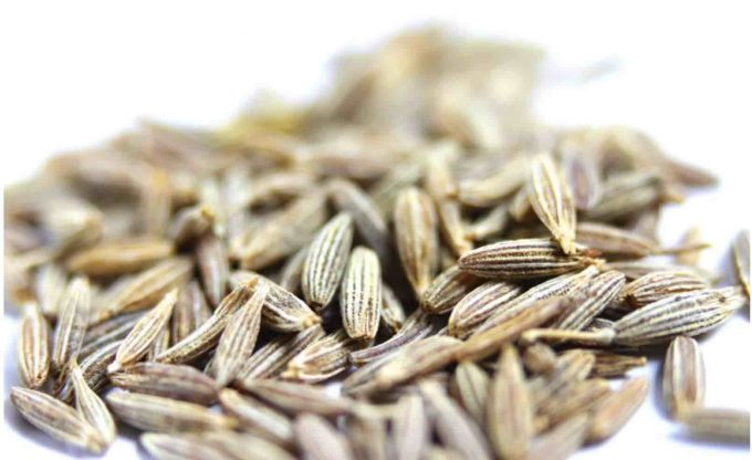 spice up your life | why we should be eating cumin
