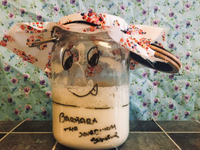 How to cultivate a Sourdough Starter