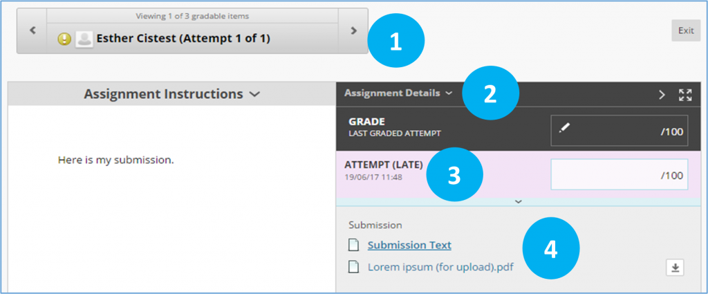 screen image showing the grade assignment window in a Blackboard Assignment with the different areas highlighted