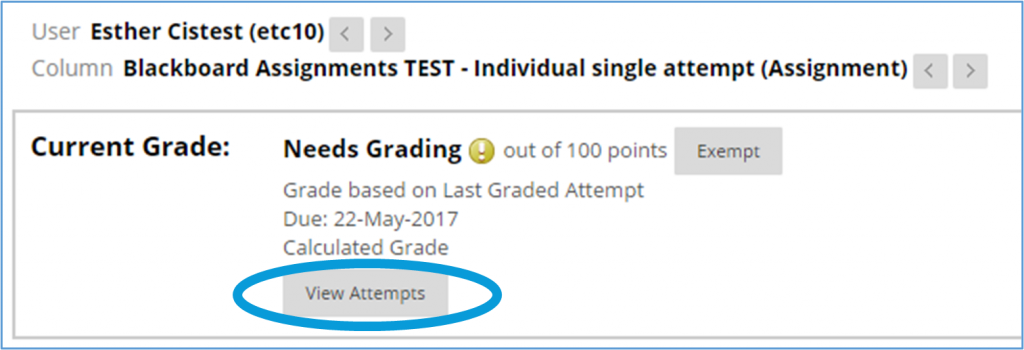 screen image showing the grade details window in Blackboard Assignments with the View Attempts icon highlighted