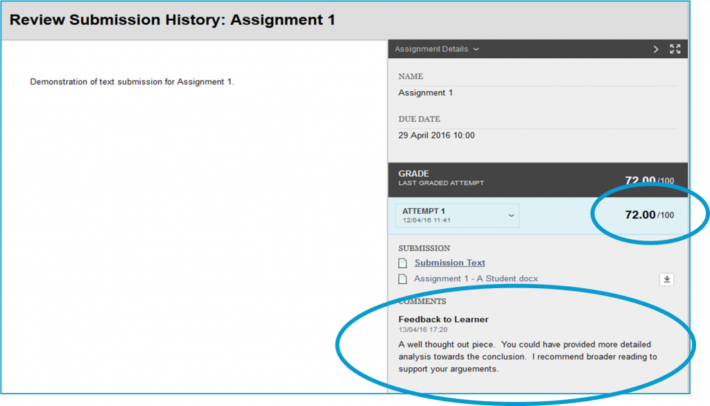 screen image showing the review submission history window in a Blackboard Assignment displaying feedback given by the tutor