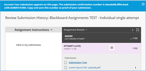 a screen image of the Blackboard successful submission bar showing a summary of what has been submitted together with the submission confirmation number.
