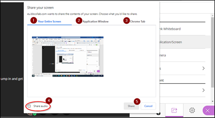Screen image showing the Share Application / Screen window in Collaborate.
