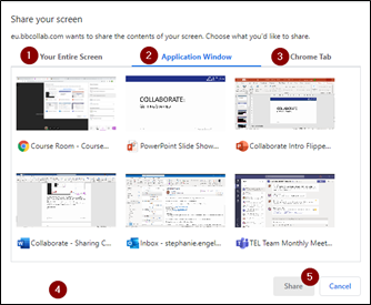 Screen image showing the Share Application / Screen window with the Application Window selected in Collaborate.