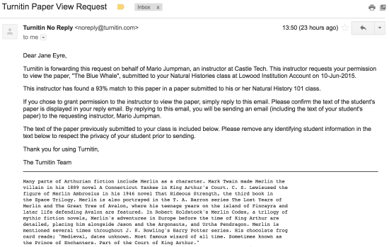 A Turnitin Paper View Request as received by email. Among the information provided at the top of the student's original work is information about the location of the paper, where the request is coming from, and the size of the match.
