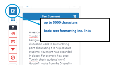 Screen image showing the text panel with overall feedback entered.