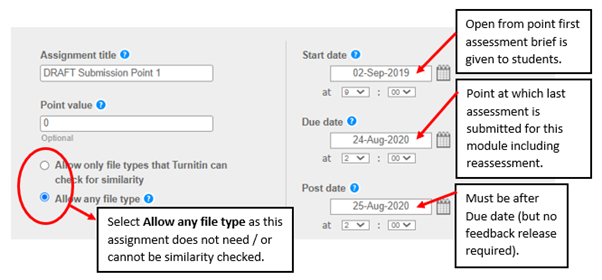 Screen image showing the initial settings for a Draft Turnitin Assignment which does not return a Similarity Report.