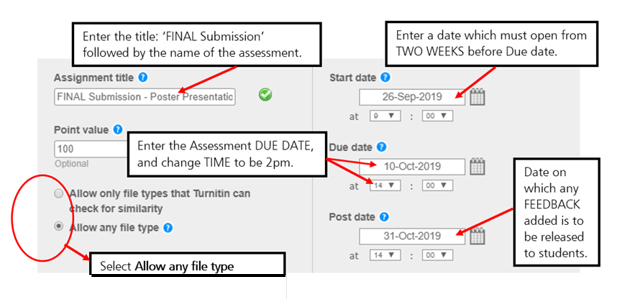 Screen image of initial settings for a non standard Final Turnitin Assignment which may not return a Similarity Report.
