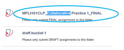 Screen image of a typical Turnitin Assignment link
