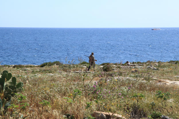 Malta, shooting birds and democracy