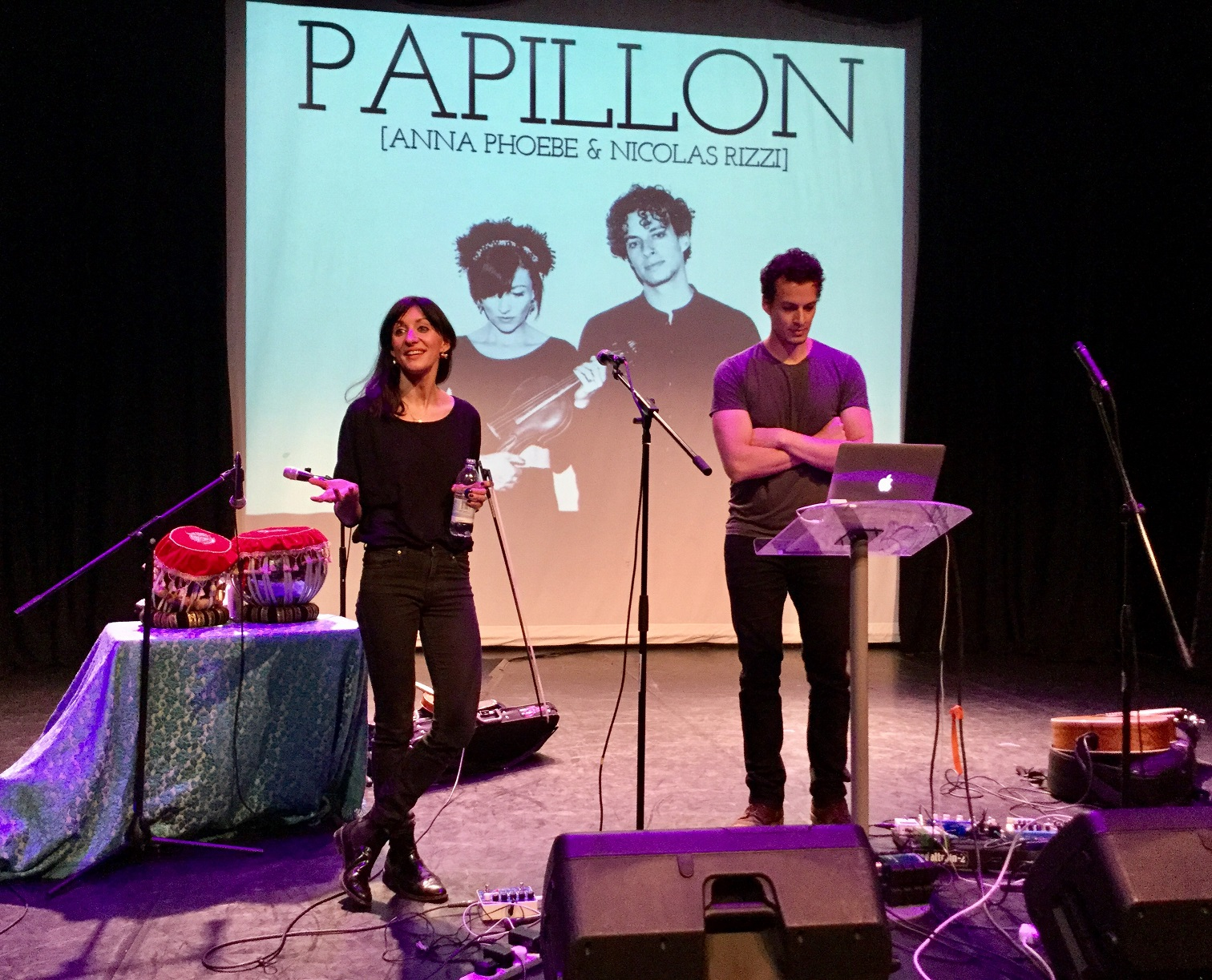 The Visit of Papillon