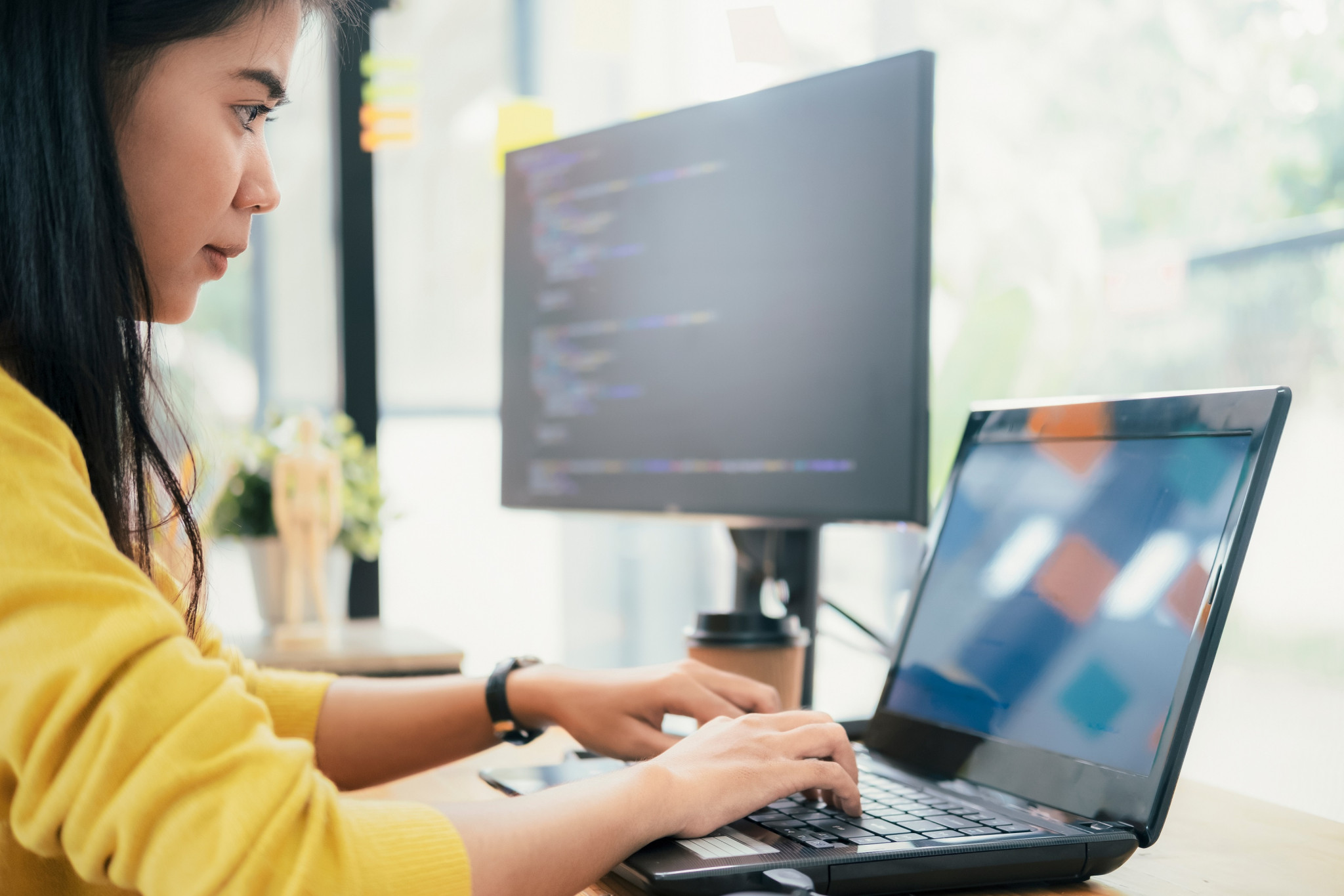 Why become a Software Engineer