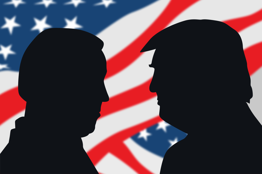 A Glimmer of Hope in 2020:  One American's Reaction to the US Elections