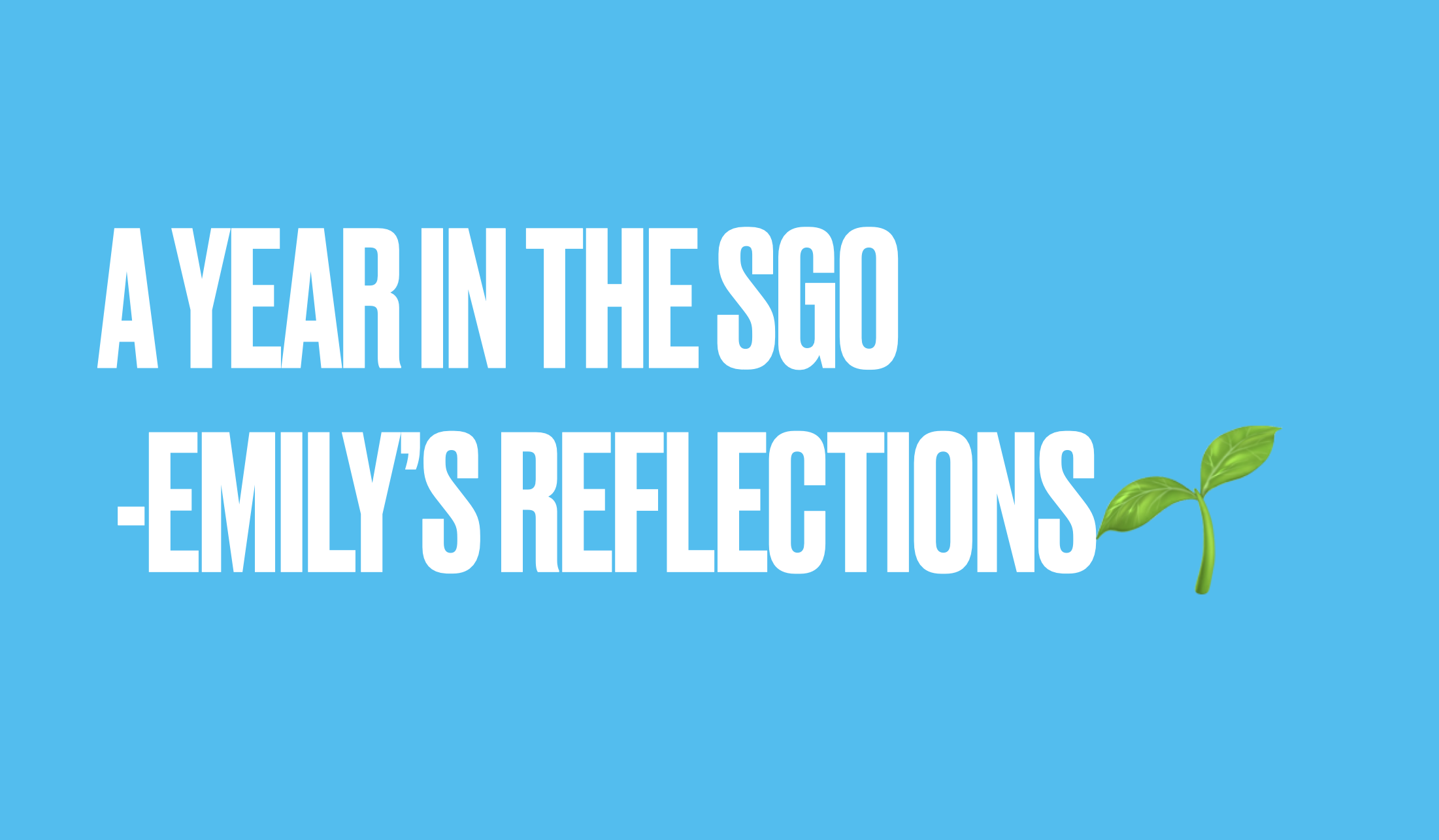 A year in the SGO - Emily's reflections
