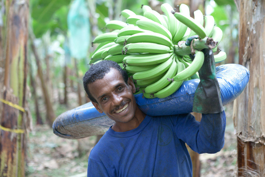 Fairtrade Fortnight: What does 'Fairtrade' actually mean, and why does it matter?
