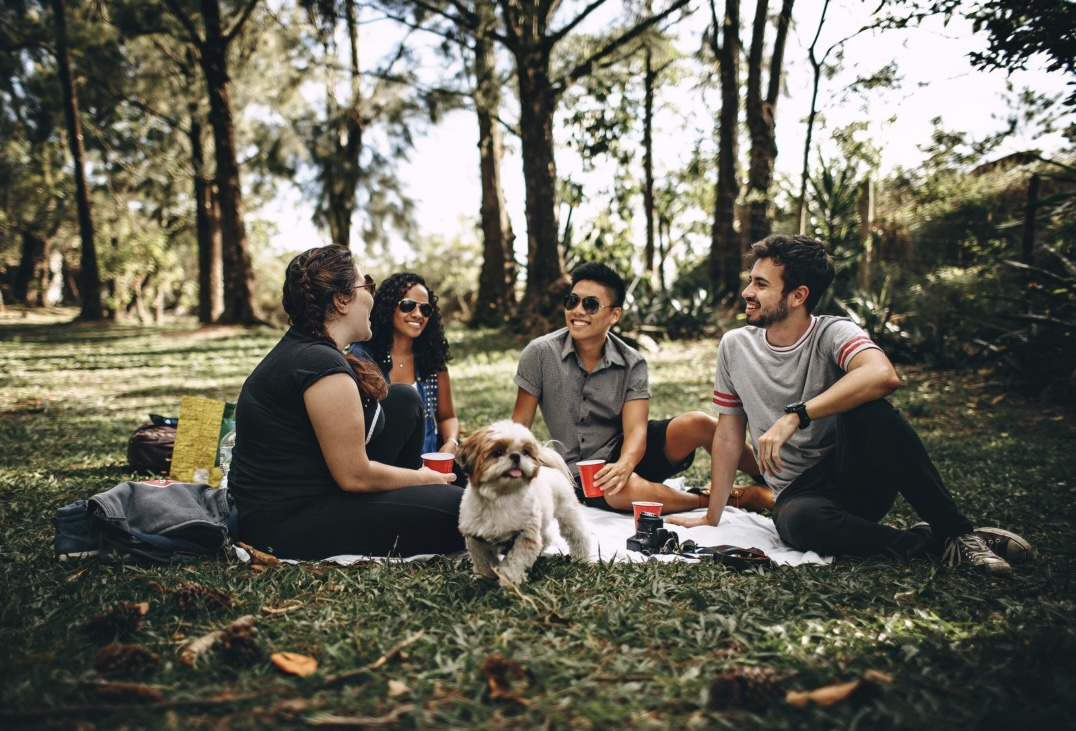 Sustainable Summer - 5 ways to save money and still have a great summer break